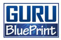 Eben Pagen Guru Blueprint